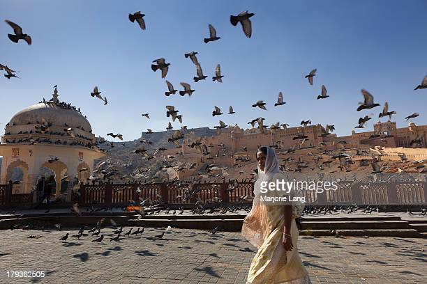 CONTENT] A woman is walking by the Amber Fort surrounded by pigeons flying all over the scene Rajasthan India Amer Fort is located in Amer 11...