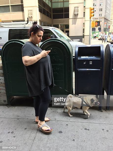 A woman is walking her dog on a Manhattan NYC sidewalk while looking down at the cell phone in her hand May 28 2015