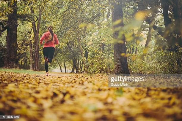 woman jogging in park. - jogging stock pictures, royalty-free photos & images