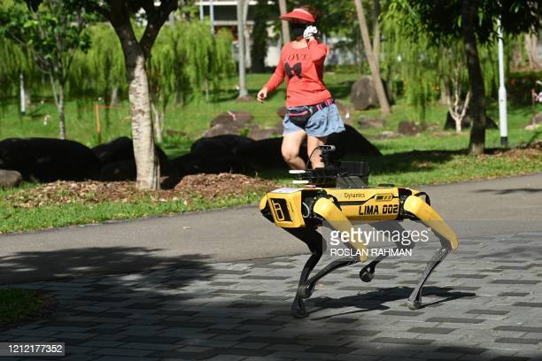 Woman jogs past a four-legged robot called Spot, which broadcasts a recorded message reminding people to observe safe distancing as a preventive...