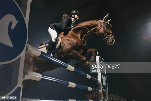 woman jumping with horse over the hurdle - equestrian event stock pictures, royalty-free photos & images