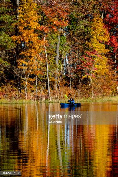 woman kayaking in lake reflecting the autumn colors - ogphoto imagens e fotografias de stock