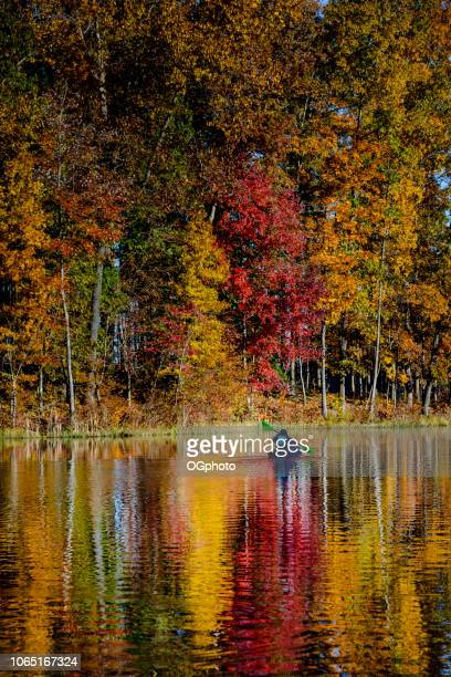 woman kayaking in lake reflecting the autumn colors - ogphoto stock photos and pictures