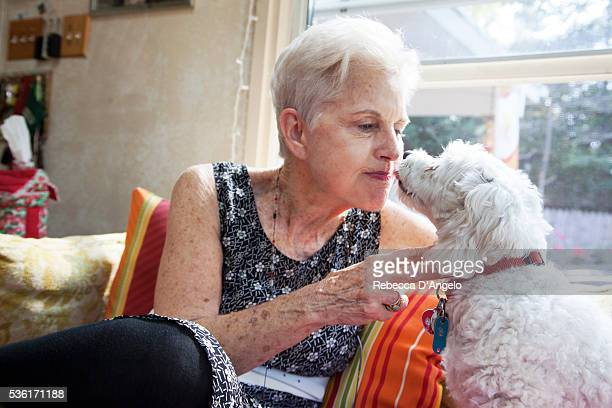 woman kiss dog - liver spot stock photos and pictures