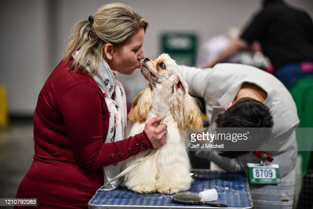 Woman kisses an American Cocker Spaniel on day 2 of the Cruft's dog show at the NEC Arena on March 6, 2020 in Birmingham, England. The annual...