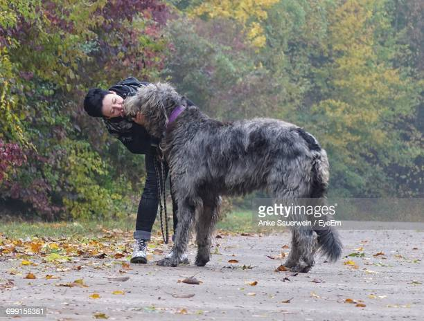 Woman Kissing Irish Wolfhound Dog On Road At Park During Autumn