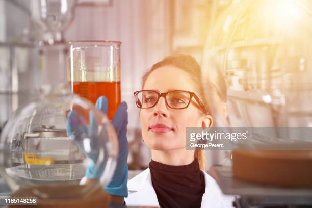 woman lab technician analyzing beaker of liquid - cbd oil stock pictures, royalty-free photos & images