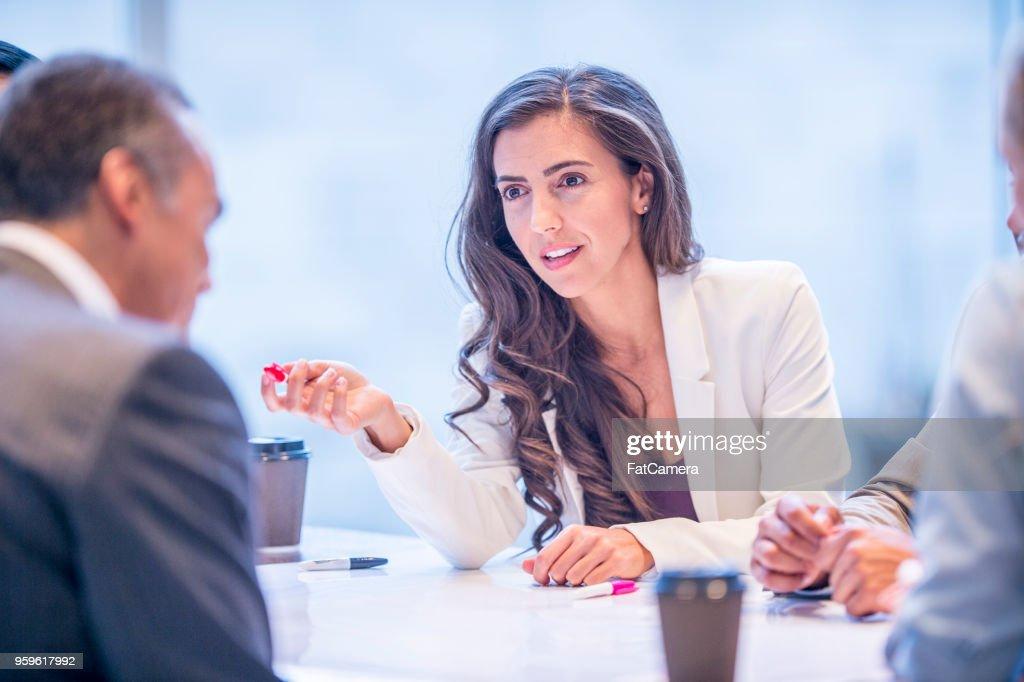 Frau führt ein Treffen : Stock-Foto