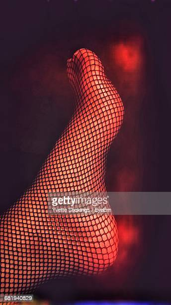 Woman Leg With Fishnet Stockings