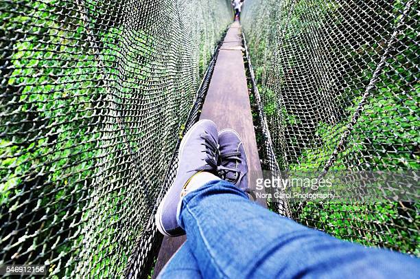 Woman legs relax on top of a tropical jungle canopy walkway
