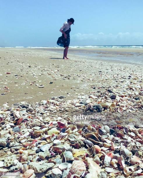 Woman looking a seashells on a beach.