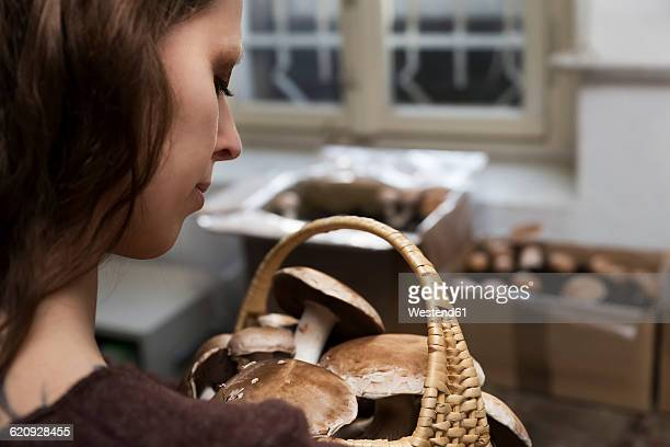 Woman looking at basket with crimini mushrooms cultivated in cellar