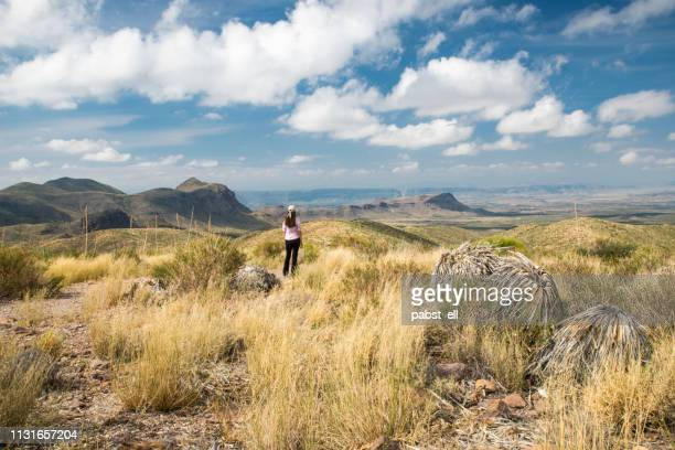 woman looking at mountains big bend national park - big bend national park stock pictures, royalty-free photos & images