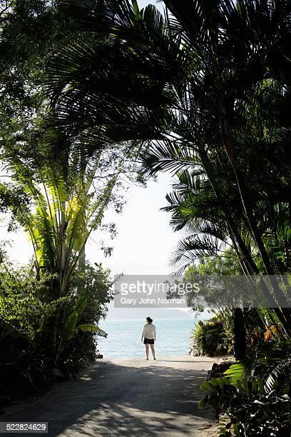 Woman looking at ocean on tropical island.
