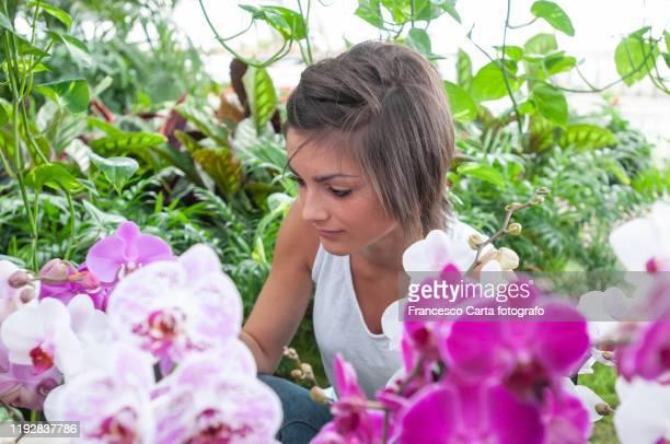 woman looking at orchid - botanischer garten stock-fotos und bilder