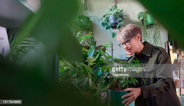 woman looking at plants in plant nursery - examining stock pictures, royalty-free photos & images