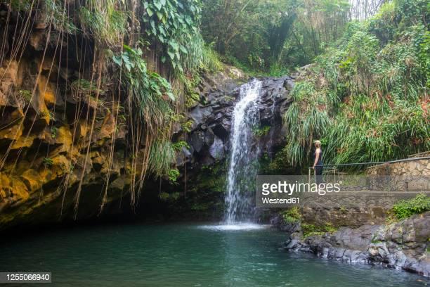 woman looking at the annandale falls, grenada, caribbean - paisajes de isla de  granada fotografías e imágenes de stock