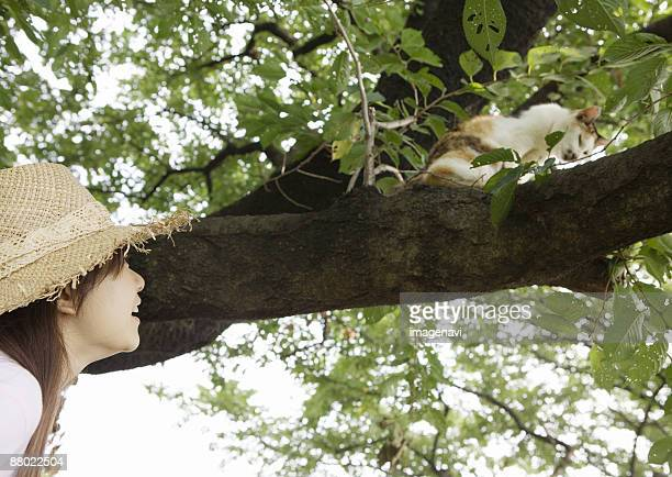 a woman looking at the cat on a tree - soltanto un animale foto e immagini stock