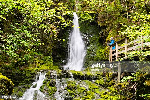 woman looking at waterfall, fundy national park - national park stock pictures, royalty-free photos & images