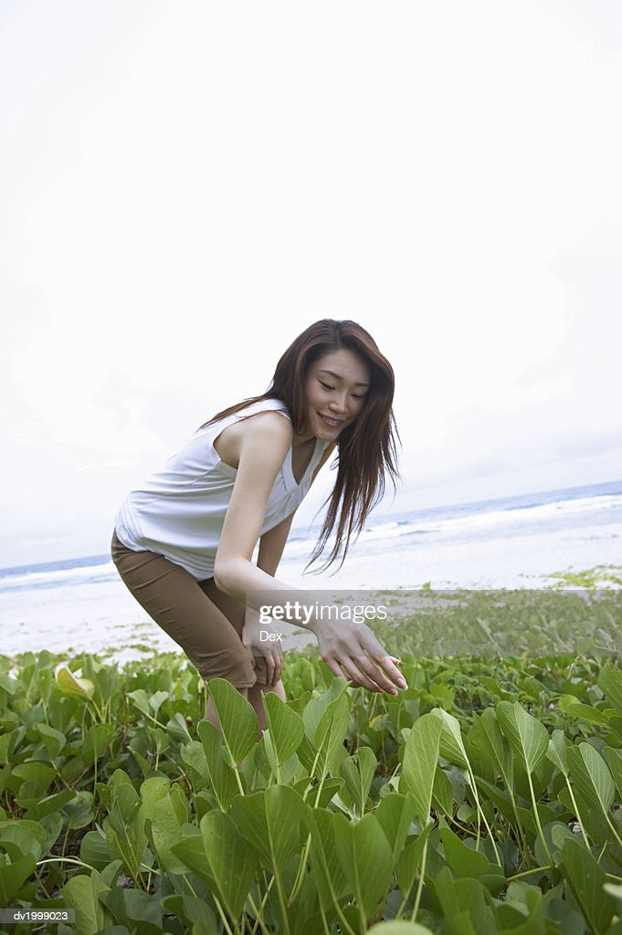 Woman Looking Down at Plants on a Beach : Stock Photo