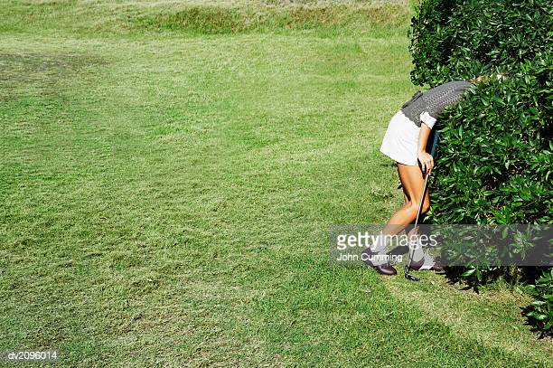 woman looking for a golf ball in the bushes - golf ball stock pictures, royalty-free photos & images