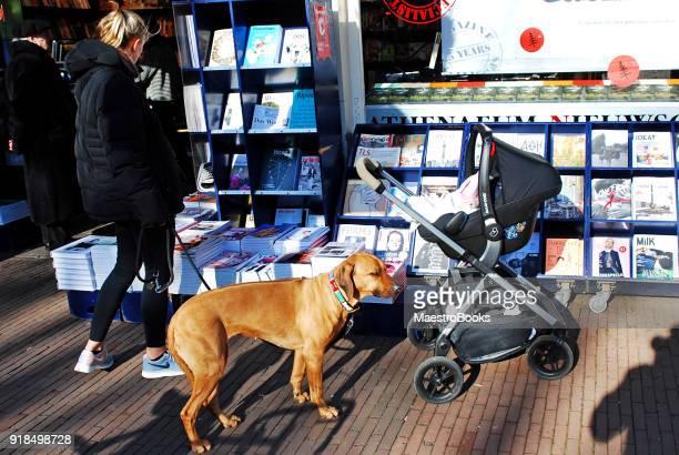 Vrouw op zoek naar een krant met babyjongen en hond.