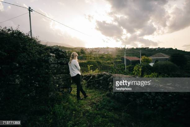 woman looking out over vineyard landscape - heshphoto photos et images de collection