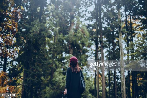 woman looking up and enjoying nature in green forest - travel ストックフォトと画像