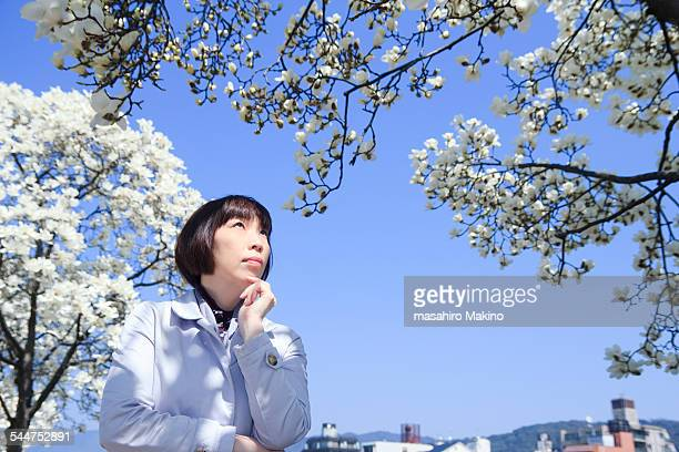 Woman looking up at magnolia tree