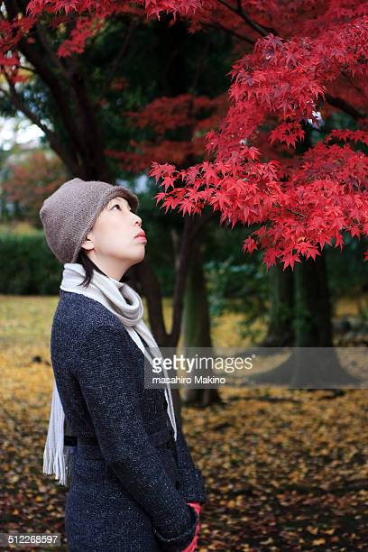 Woman looking up at maple leaves