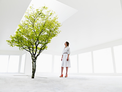 Woman looking up at tree growing out of stairwell - gettyimageskorea