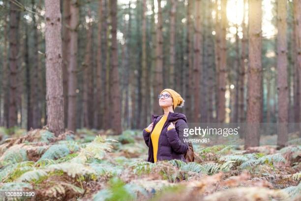 woman looking up while exploring in forest during autumn - looking up stock pictures, royalty-free photos & images