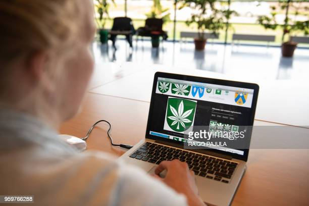 A woman looks at a computer screen bearing an image of the new official logo of the Estonia town of Kanepi whose name literally means 'cannabis' on...