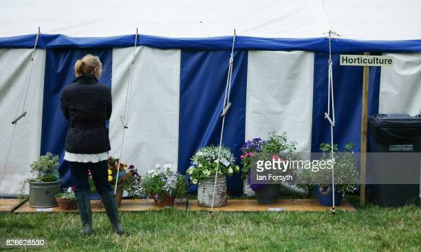 Woman looks at a display of flowers during the Osmotherley Country Show on August 5, 2017 in Osmotherley, England. The annual show hosts pony, cattle...