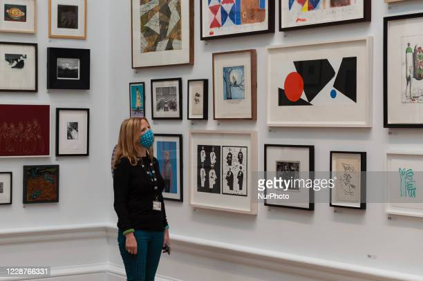Woman looks at a selection of the artworks on display, including 'Tipitina' by Mali Morris RA , during a press preview of the 252nd Summer Exhibition...