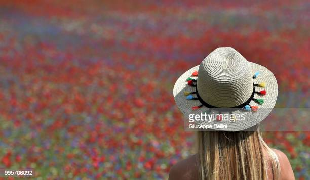 Woman looks at the flowers during Annual Blossom in Castelluccio on July 10, 2018 in Castelluccio di Norcia near Perugia, Italy.