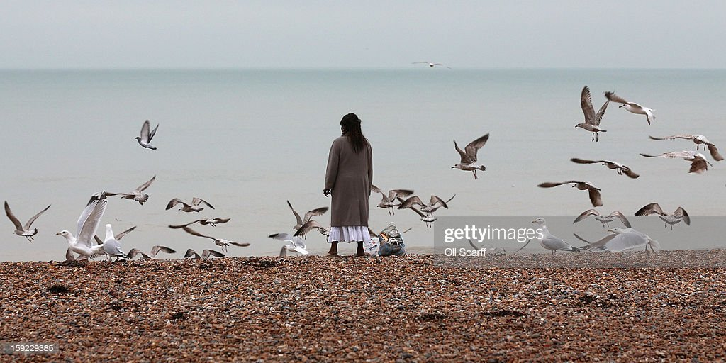 A woman looks out to sea as she feeds gulls and crows on Brighton beach on January 9, 2013 in Brighton, England.