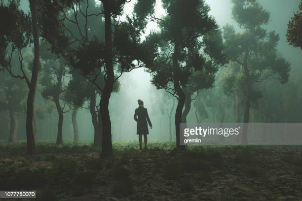 woman lost in fantasy forest at night - dreamlike stock pictures, royalty-free photos & images