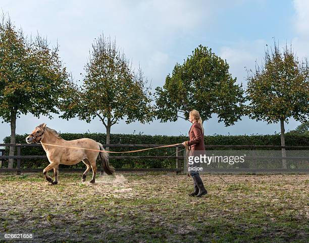 woman lunging horse