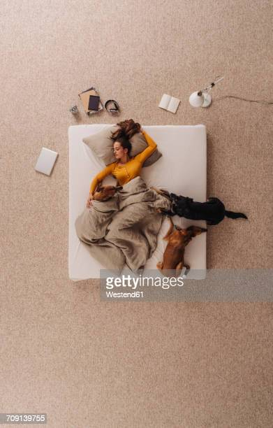 Woman lying in bed with her dogs, sleeping