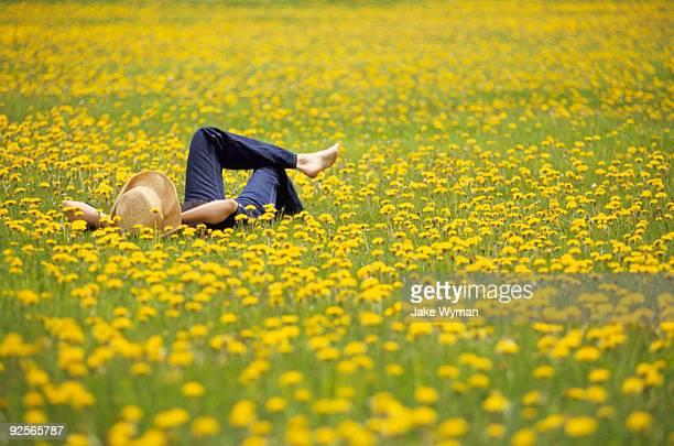 woman lying in field of flowers - printemps photos et images de collection
