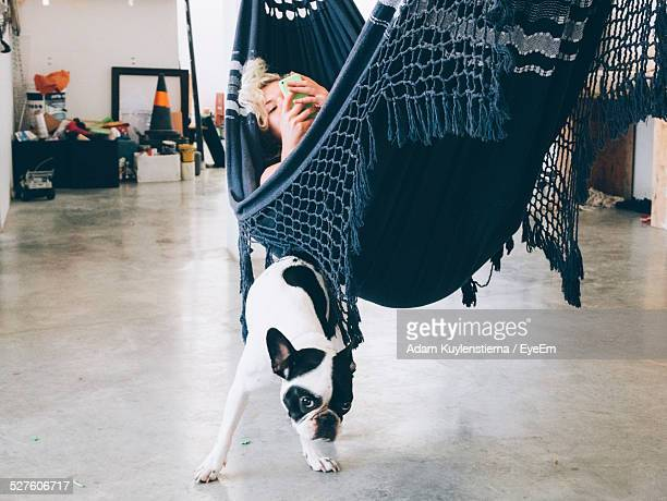 Woman Lying In Hammock With Dog Standing Under