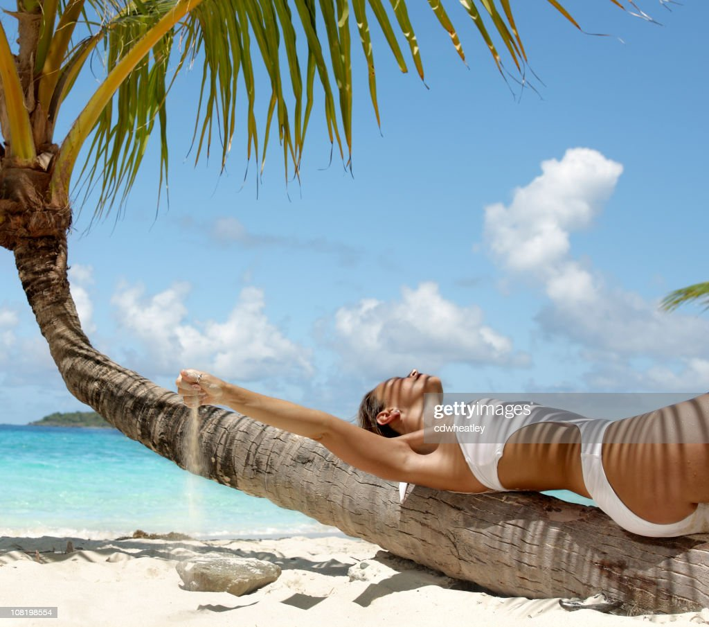 Woman lying on a palm tree at the caribbean beach stock photo woman lying on a palm tree at the caribbean beach stock photo voltagebd