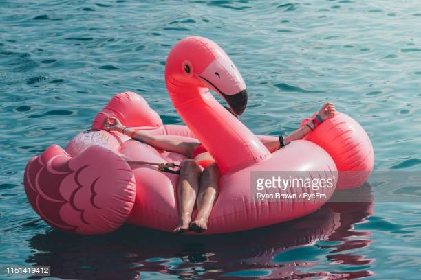 woman lying on animal shaped inflatable raft in lake - inflatable raft stock pictures, royalty-free photos & images