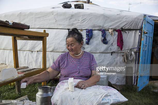 A woman makes dairy products to sell in Ikh Tamir Mongolia taken on August 2 2016 In Ikh Tamir herders have begun signing contracts and working...