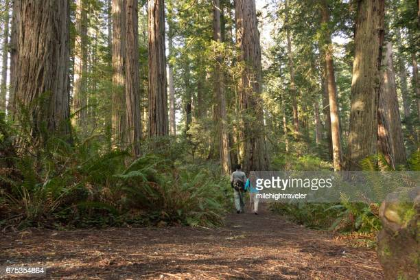 Woman man couple hikers explore old growth forest Redwood National Park California