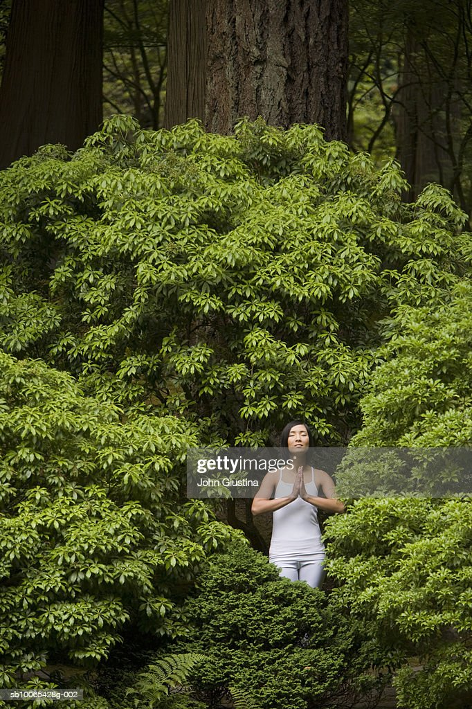 Woman meditating among garden shrubbery : Foto stock