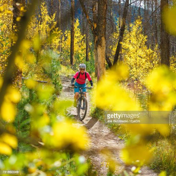 Woman Mountain Biking Amidst Trees At Banff National Park