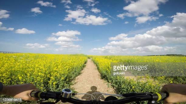 pov of woman mountain biking at rapeseed field - oxfordshire stock pictures, royalty-free photos & images