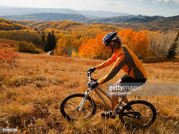 woman mountain biking in fall colors - steamboat springs colorado stock photos and pictures